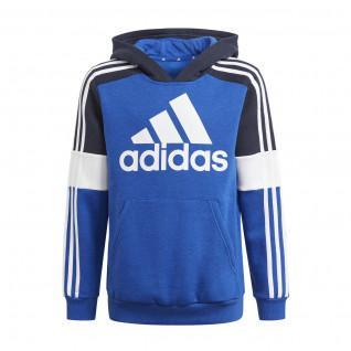 Sweatshirt à capuche enfant adidas Essentials Colorblock