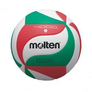 Ballon de compétition Molten V5M4000