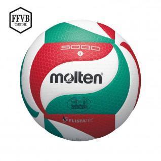 Ballon de compétition Molten V5M5000 LNV