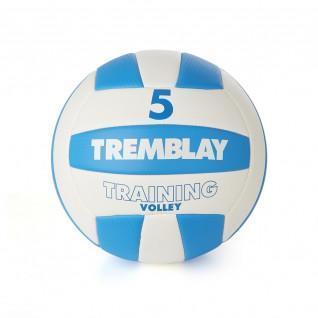 Ballon Tremblay training volley