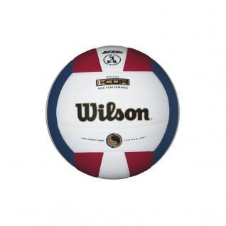 Ballon Wilson Icor Perf Deflate